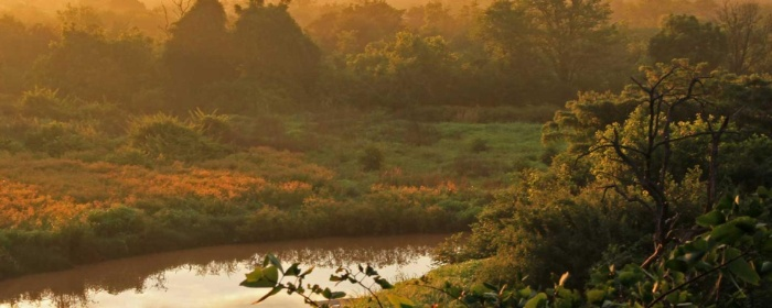 Kariba Redd+ preservation project, Zimbabwe